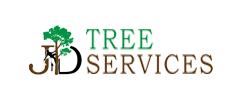 Tree Surgeons Wrexham, JD TRee Services
